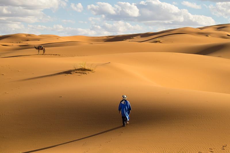 Genevieve Hathaway_Morocco_Sahara_Bedouin and Camel.jpg
