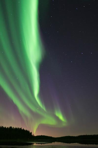 Aurora Borealis at Kalimenlampi VIII