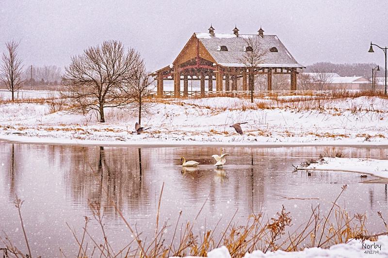 Chevalle Goose Swan bridge-2.jpg