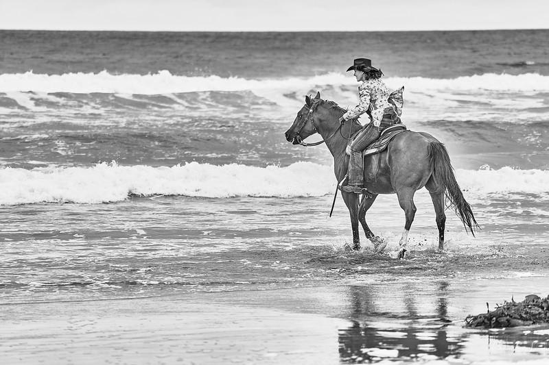 _DSC20770167@Catherine Aranda-LearnedOceanMeadowview©CAL. 1.jpg