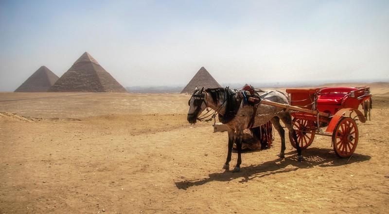 egypt 2008 (8 of 26).jpg