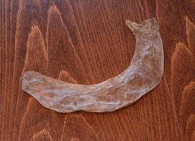 Lambasoolest kondoomi valmistamine