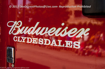 20130724 Budweiser Clydesdales - Arlington Heights