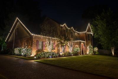 Kate R. Christmas Lights