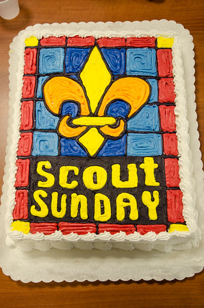 2015-02-08 Boy Scout Sunday