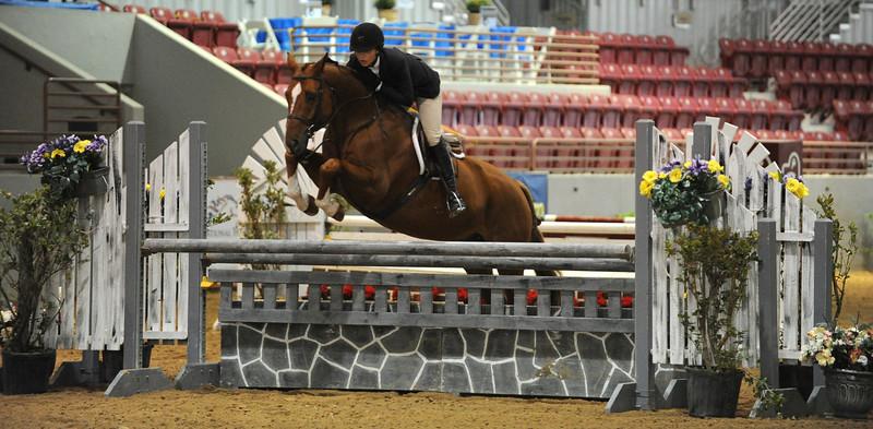Horse show (53).jpg