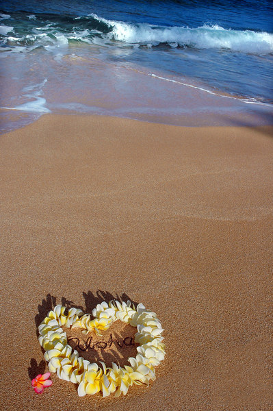 "Heart-shaped yellow and white plumeria lei and a pink plumeria blossom to the side, on the beach with ""aloha"" written inside the heart