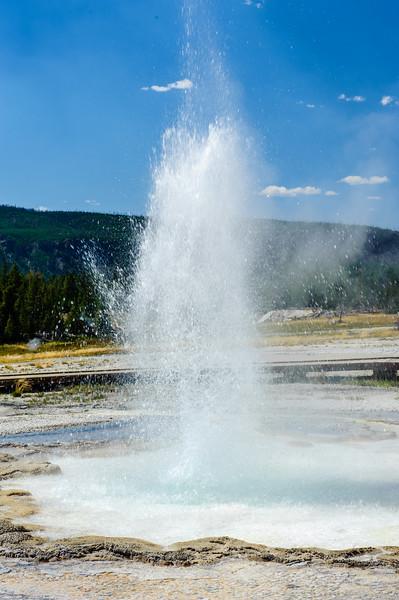 20130816-18 Yellowstone 178.jpg