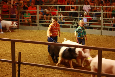 2010 Wash. Co. Fair 4-H/Open Goat Show