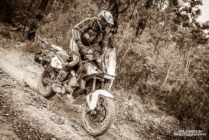 2016 KTM Adventure Rally-79.jpg
