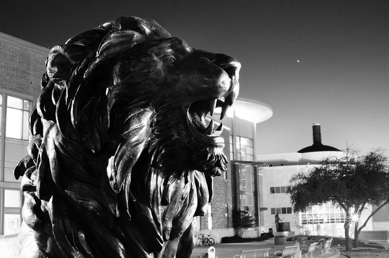 10073-New Lion Statue-2958.jpg