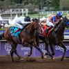 Horse Racing 2014: Breeders Cup Racing NOV 01