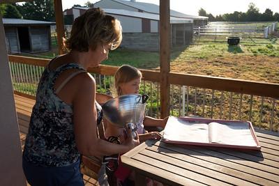 Mimi's Farm