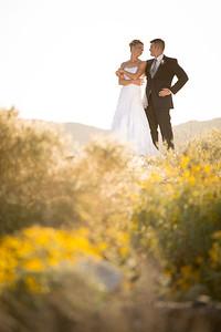 Lloyd-Wedding