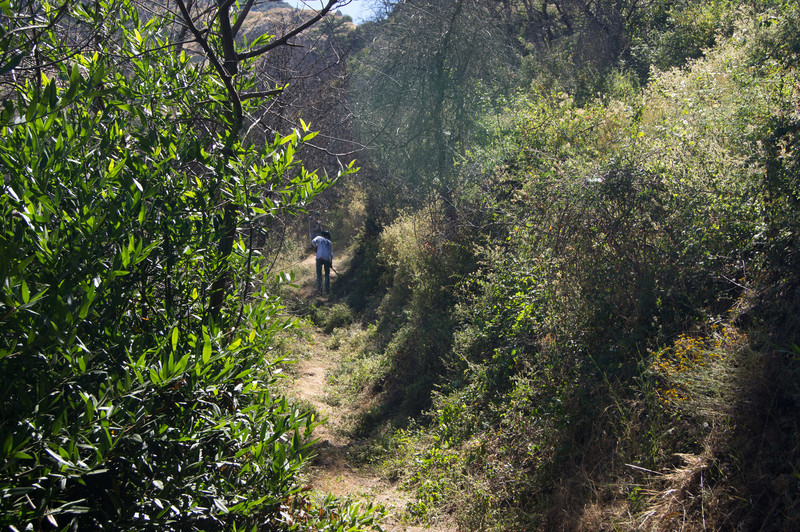 20120630012-Trailwork, MWBA, Sunset Ridge.jpg