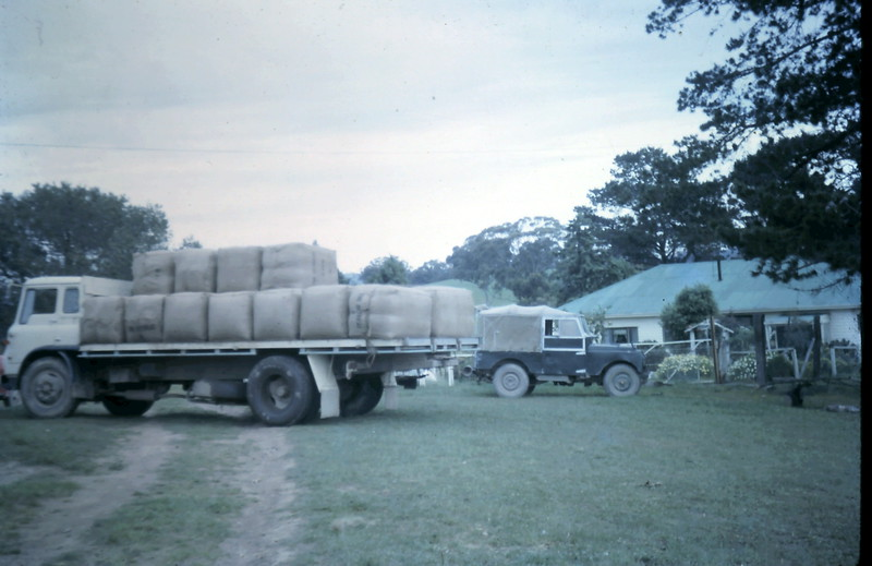 1964-10-28 (4) loading wool @ Broadford.JPG
