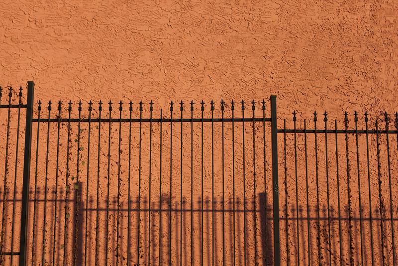 Fences _MG_9227.jpg