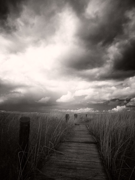 Boardwalk, Alviso, California, 2006