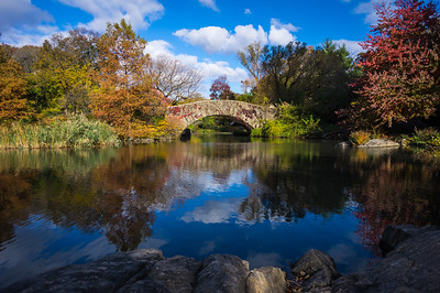 Central Park Fall 2014