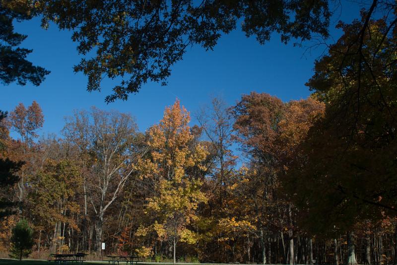 20121021-2012-10-2116-24-3113206.jpg