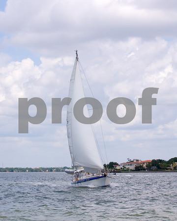 Elan- Sail #7