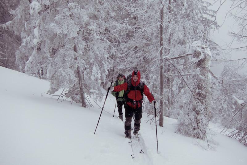 Im Wald dann wieder etwas ruhiger und sensationell winterlich.