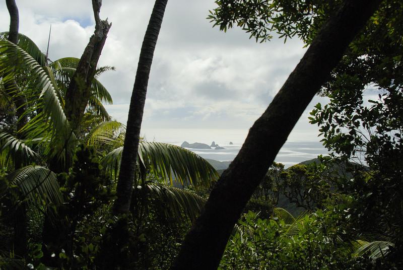 Lord Howe20080509 120838.jpg