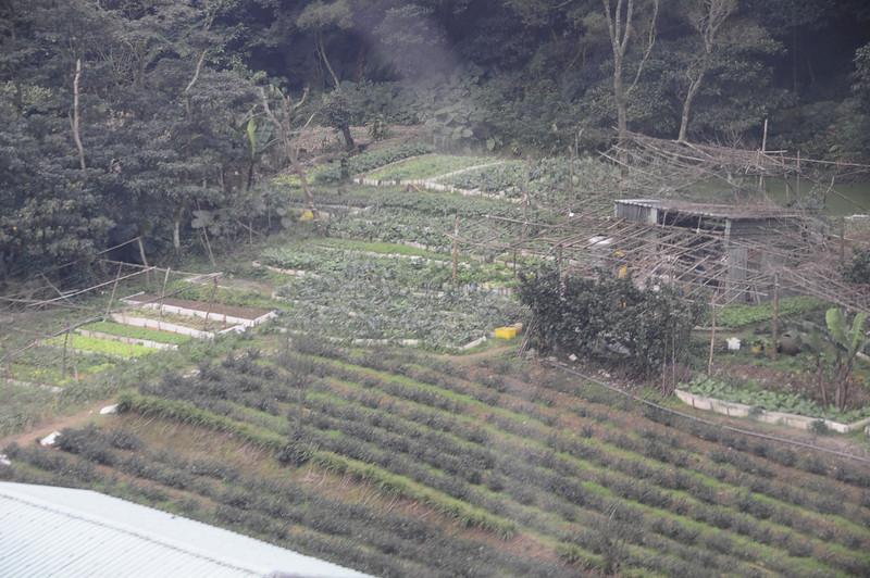 20110123_TaipeiDay2_0052.JPG