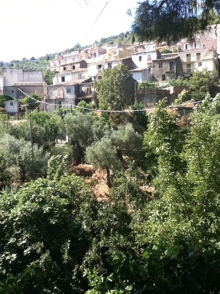 20110820-Ginka-Sicily-20110820--IMG_1576--0775.jpg
