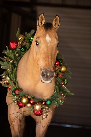 Cowboy Christmas 11-18