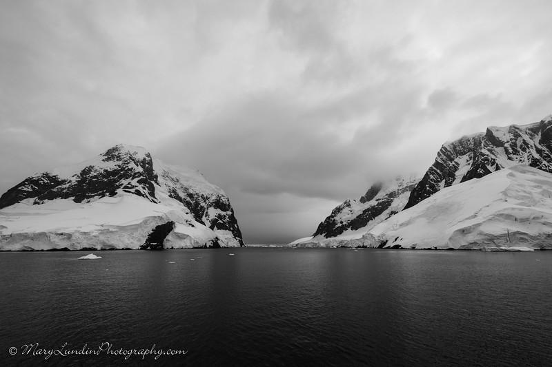 Antarctic-29