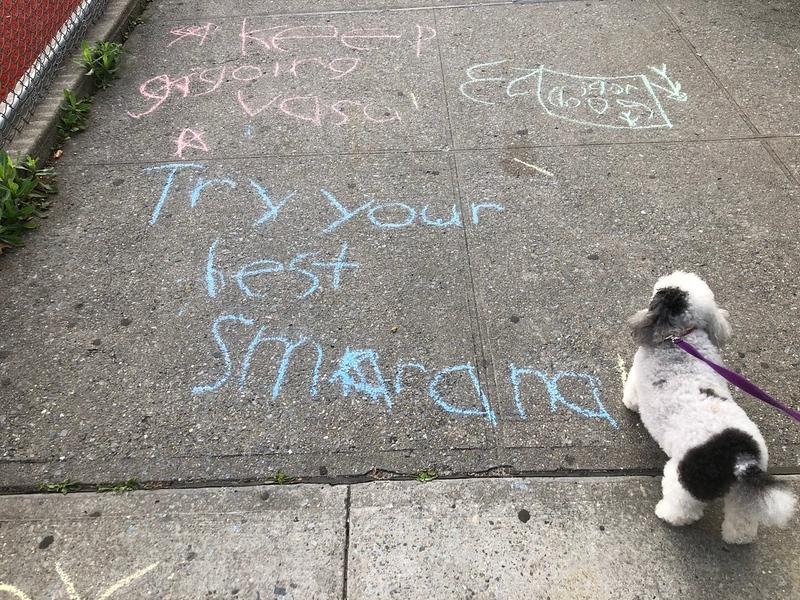 sidewalk writing Gopee.jpg