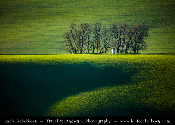Czech Republic - Moravian fields