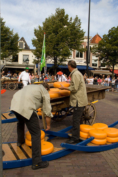 Alkmaar. Loading the cheese into carts.