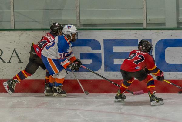 Ice Hockey 2019 January