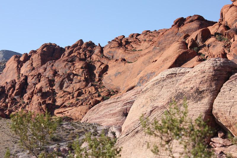 Las Vegas and Surrounding Area 2009