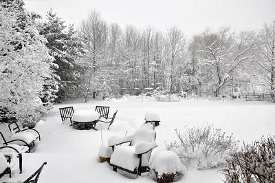 Spring Snow '18