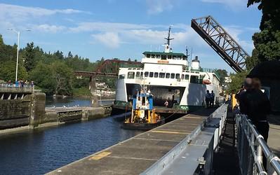 Sealth Ferry @ the Ballard Locks - July
