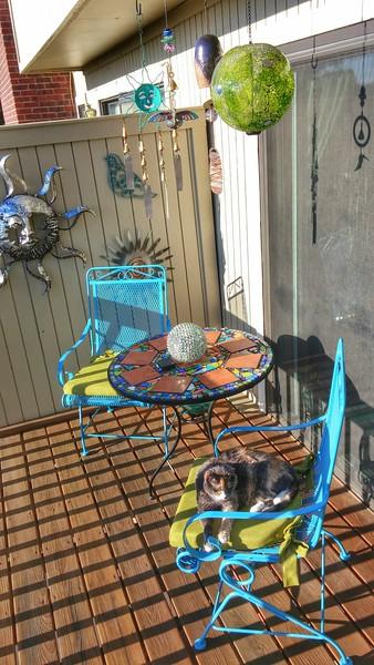 patio (114).jpg