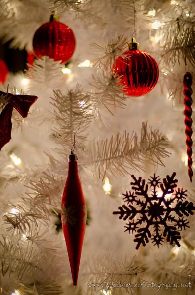 20111224_ChristmasEve_3051.jpg