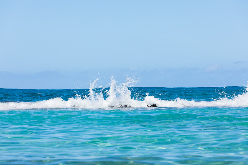Travel_Hawaii_032020_0162.jpg