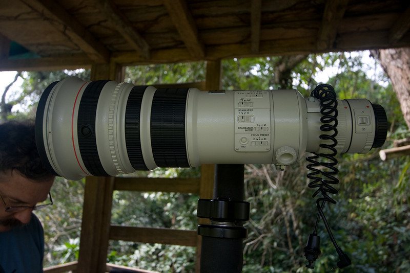 The Canon EF 500mm f/4L IS Prime.  I don't own this lens (it retails for $5500!)  When we arrived at the Bai it was there, available for use, which made me very glad I had a Canon EOS SLR.  With the teleconverter installed this setup has a 700mm focal length (digital crop factor on my Rebel XTi makes this a 1120mm 35mm equivalent).