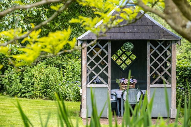 Mickley open gardens 2019-2.jpg