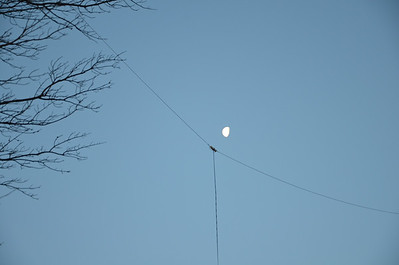 Receive Antenna Distribution