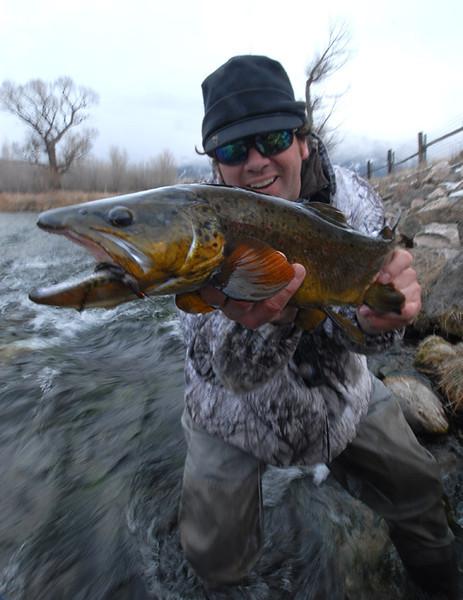 Big Fish 2013
