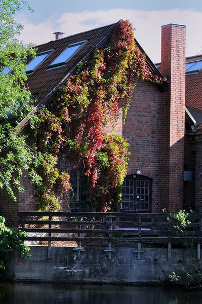 Lindeijer_2012-09-15_131815.jpg