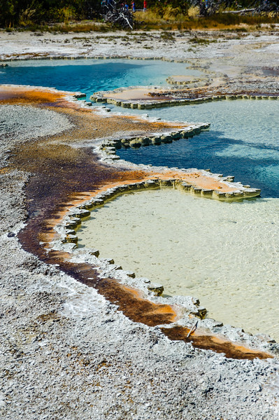 20130816-18 Yellowstone 189.jpg