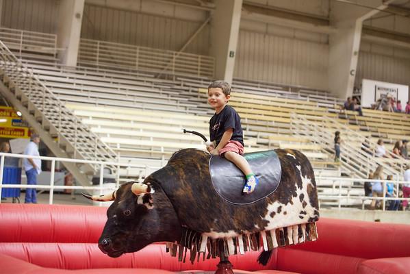 Bull-Riding