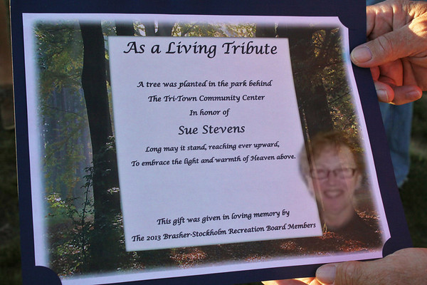 Sue Stevens...Memorial Tree Dedication