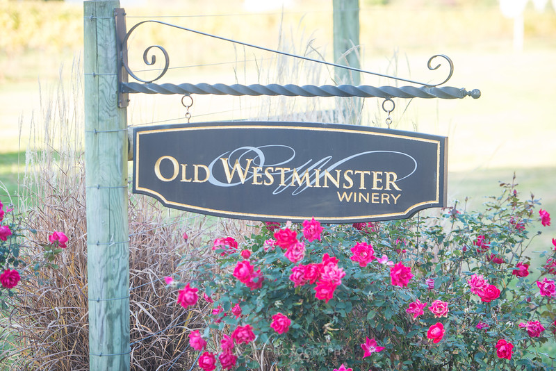 Old Westminster Winery Engagement 01.jpg